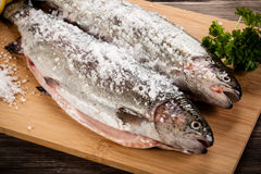 Fresh raw salmon. On wooden board Royalty Free Stock Images