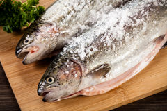 Fresh raw salmon. On wooden board Stock Images