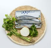 Fresh raw sardine fish with cumin herbs and onion on bamboo tray. In white background deliciously Stock Photography
