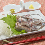 Fresh raw sardine fish fillet with herbs and wasabi. Deliciously Royalty Free Stock Photos