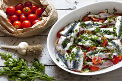 Fresh raw sardines on casserole with cherry tomatoes slices, parsley, garlic and potatoes on rustic mediterranean background woode Royalty Free Stock Images