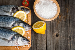 Fresh, raw sea bass. On the catching board Stock Photography