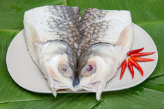 Fresh raw sea bass with chili on plate. And banana leaf in background Stock Images