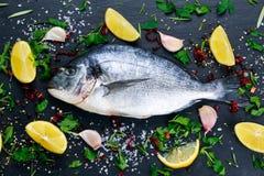 Fresh Raw Sea Bream Fish on blue stone background. Stock Photo