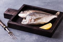 Fresh raw sea bream fish decorated with lemon slices. On wooden cutting board Stock Images