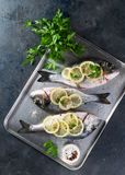 Fresh raw sea bream fish decorated with lemon slices, herbs and parsley on dark background. Healthy food concept, top view, copy. Fresh raw sea bream fish royalty free stock photo