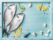 Fresh raw sea bream fish decorated with lemon slices, herbs and  shells in blue tray, copy space. Fresh raw sea bream fish decorated with lemon slices, herbs and Stock Photo