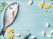 Fresh raw sea bream fish decorated with lemon slices, spices and shells on blue wooden background, copy space Royalty Free Stock Images