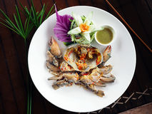 Fresh raw sea crab served with spicy Thai style seafood sauce. Stock Photos