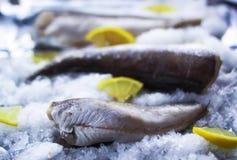 Fresh raw sea fish and lemon on ice surface. Fresh raw sea fish and lemon peces on ice surface Royalty Free Stock Photo