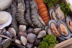 Fresh raw sea food Royalty Free Stock Photography