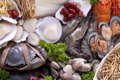 Fresh raw sea food. Royalty Free Stock Image