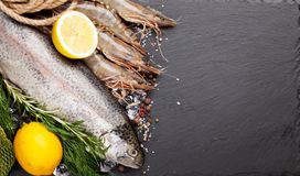 Fresh raw sea food with spices Royalty Free Stock Photography