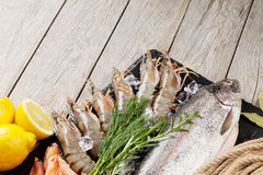 Fresh raw sea food with spices Royalty Free Stock Photos