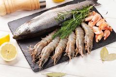 Fresh raw sea food with spices Royalty Free Stock Photo