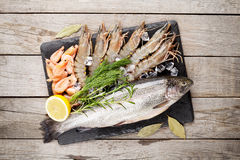 Fresh raw sea food with spices Royalty Free Stock Images