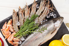 Fresh raw sea food with spices. On stone plate over wooden table background. Top view Royalty Free Stock Image