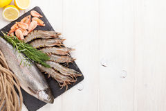 Fresh raw sea food with spices Stock Image