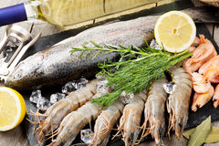 Fresh raw sea food with spices and white wine Stock Image