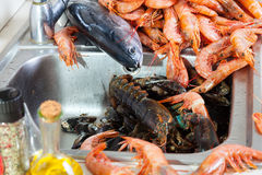 Fresh raw sea foods and fish at  sink in home. Fresh raw sea foods and fish at kitchen sink in home kitchen Stock Photo