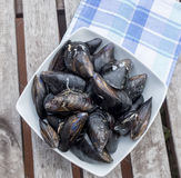 Fresh and raw sea mussels in white ceramic bowl. Resting on cotton blue and green napkin. Wooden table and white wall background. Above view Stock Photos