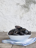 Fresh and raw sea mussels in white ceramic bowl. Resting on cotton blue and green napkin. Wooden table and white wall background. Side view Stock Photos