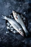 Fresh raw seabass fish on black stone background with ice. Culinary seafood background. Top view, copy space stock photography