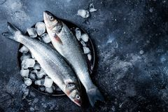 Fresh raw seabass fish on black stone background with ice. Culinary seafood background. Top view, copy space stock photos