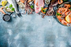 Fresh raw seafood. Squid shrimp oyster mussels fish with spices of herbs lemon on a light blue background copy space top view Stock Photography