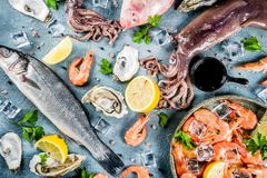 Fresh raw seafood. Squid shrimp oyster mussels fish with spices of herbs lemon on a light blue background copy space top view Royalty Free Stock Photo