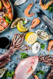Fresh raw seafood. Squid shrimp oyster mussels fish with spices of herbs lemon on a light blue background copy space top view Stock Image
