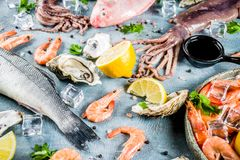 Fresh raw seafood. Squid shrimp oyster mussels fish with spices of herbs lemon on a light blue background copy space Stock Images