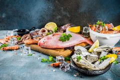 Fresh raw seafood. Squid shrimp oyster mussels fish with spices of herbs lemon on a light blue background copy space Stock Photos
