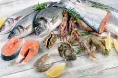 Fresh raw seafood. Healthy diet eating Royalty Free Stock Images
