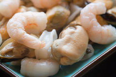Fresh raw seafood mix of prawns mussels and squid on serving pla Royalty Free Stock Photos