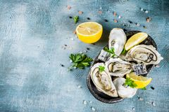 Fresh raw seafood, oysters. With lemon and ice on a light blue background Royalty Free Stock Images