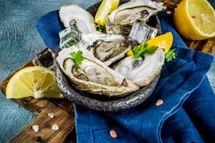 Fresh raw seafood, oysters. With lemon and ice on a light blue background Royalty Free Stock Photography