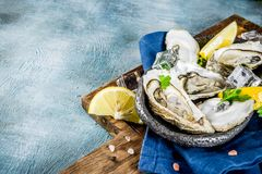 Fresh raw seafood, oysters. With lemon and ice on a light blue background Royalty Free Stock Photo