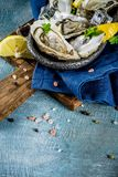 Fresh raw seafood, oysters. With lemon and ice on a light blue background Stock Photos
