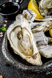 Fresh raw seafood, oysters. With lemon and ice on a light blue background Royalty Free Stock Image