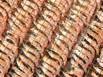 Fresh raw seafood shrimp on outdoor metial net. Fresh raw seafood shrimp on the outdoor metial net Stock Images