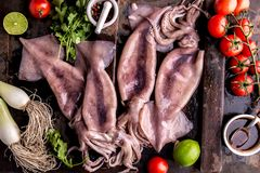 Fresh raw seafood squid calamary and ingredients on dark background. Top view.  Royalty Free Stock Photo