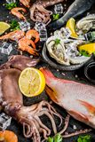 Fresh raw seafood. Squid shrimp oyster mussels fish with spices of herbs lemon on dark rusty background copy space top view Stock Photography