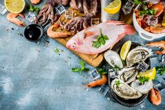 Fresh raw seafood. Squid shrimp oyster mussels fish with spices of herbs lemon on a light blue background copy space Stock Photography