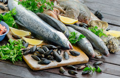 Fresh raw seafood on wooden board. Royalty Free Stock Images
