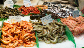 Fresh raw seafoods on  counter Royalty Free Stock Image