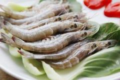 Fresh raw shrimp Stock Photos