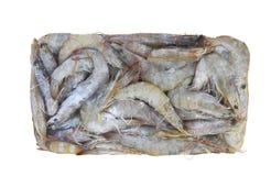 Fresh raw shrimp. Isolated on the white background Royalty Free Stock Images