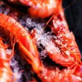 Fresh raw shrimps on black background with ice - Food background Stock Image