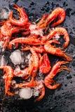 Fresh raw shrimps on a black board close. Fresh raw shrimps on a black board macro Royalty Free Stock Image